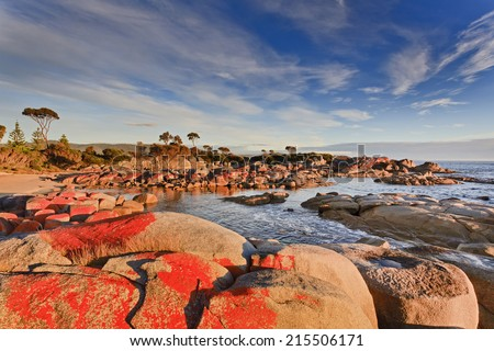 Australia Tasmania Bay of fires binalong bay red boulders at sunrise ocean coastline warm rising sunlight under blue sky - stock photo