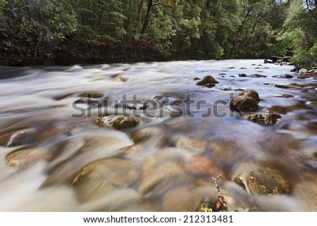 Australia Tasmania Franklin river after heavy rainfall flowing over boulders and rocks in a forest surrounded by green woods - stock photo