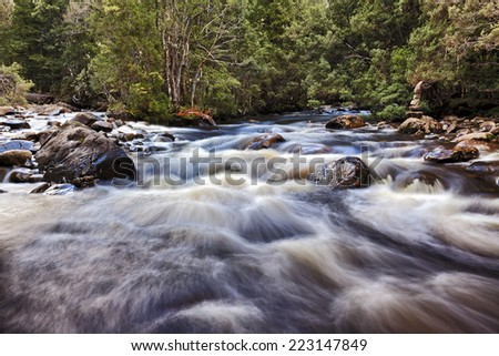 Australia Tasmania Watersmeet mountain fast river spot at St Clair national park part of overland track surrounded by eucalyptus trees with fast blurred water flow - stock photo
