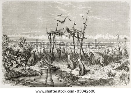 Australian burial in the desert. Created by Dore after The Rambles at the Antipodes, published on Le Tour du Monde, Paris, 1860 - stock photo