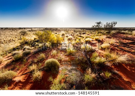 Australian outback in hot sunshine - stock photo