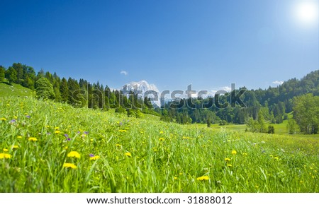 austrian landscape with meadows and mountains in the springtime - stock photo