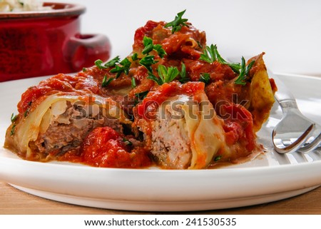 Authentic Homemade cabbage rolls - stock photo