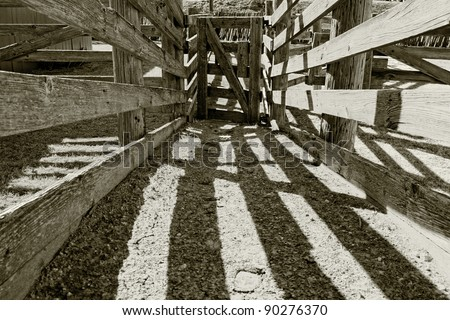 Authentic vintage wooden cattle chute used for working with livestock on a ranch in the American west (sepia tinted black and white). - stock photo