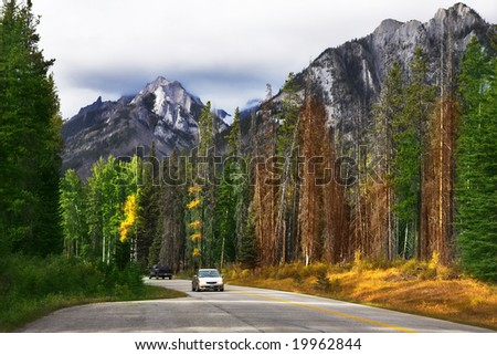 Auto-travel on the north in reserves among woods and mountains - stock photo