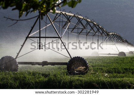 Automated Farming Irrigation Sprinklers System in Operation in north Israel - stock photo