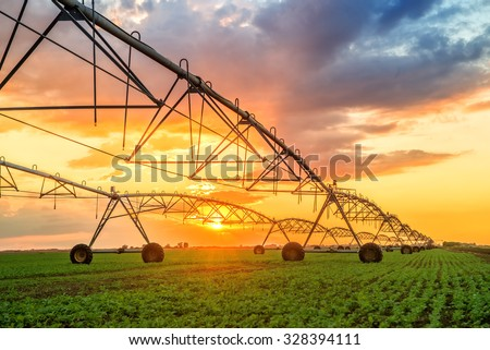 Automated farming irrigation sprinklers system on cultivated agricultural landscape field in sunset