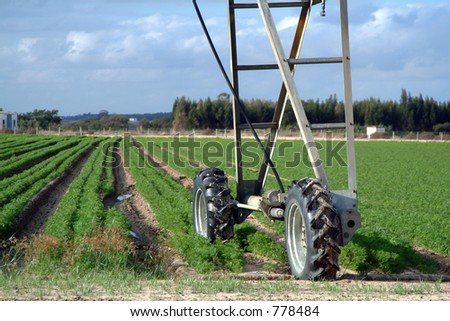 Automated water sprinklers in field - stock photo