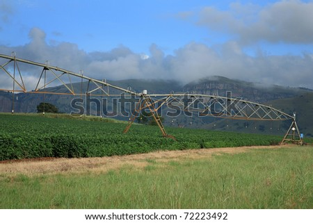 Automatic irrigation system on an agricultural farm in Mpumalanga, South Africa - stock photo