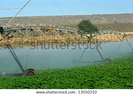 Automatic irrigation system on an agricultural farm in the Western Cape of South Africa - closer - stock photo