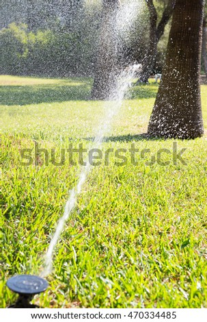 Automatic lawn sprinkler irrigating grass