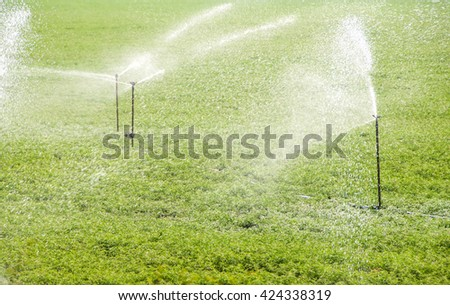 Automatic sprinkler irrigation system watering in the farm. Maharashtra, India