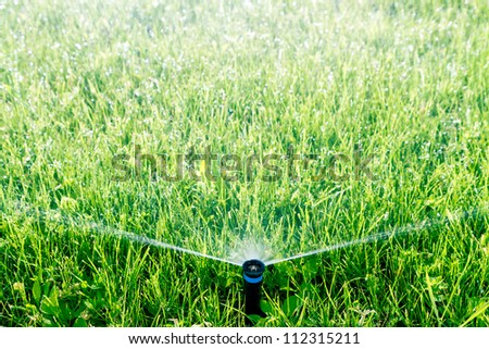 Automatic sprinkler watering green grass - stock photo