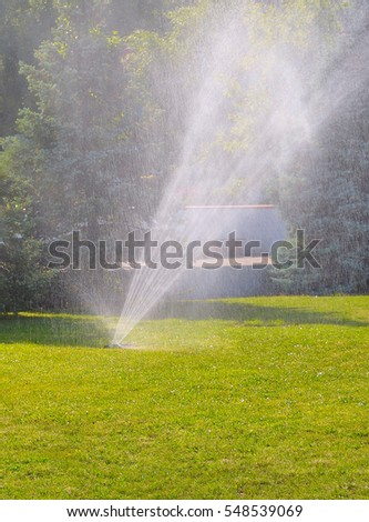 automatic watering green lawn in the summer sun