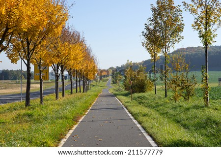 Automn colors in Germany - stock photo