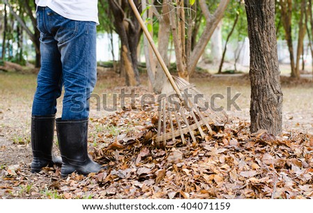 Autumn, A man sweeping the leaves to clean up the garden in the fall.