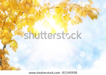 autumn abstract background with sun beam