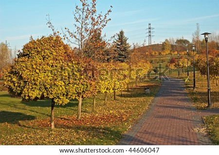 Autumn alley in fall park In Poland