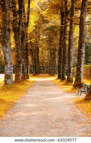 Autumn alley in the park - stock photo