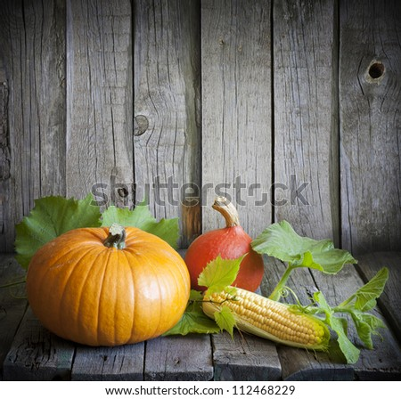 Autumn and pumpkins vintage still life - stock photo