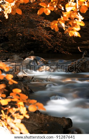 autumn around river - stock photo