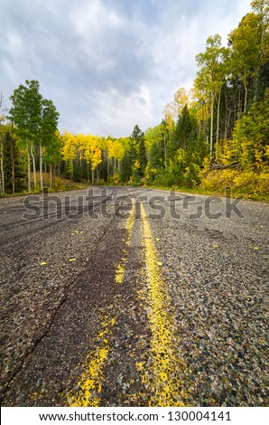 Autumn aspen colors on a rural road in New Mexico - stock photo