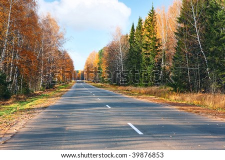 Autumn asphalt road