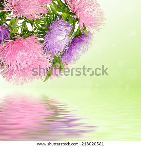 Autumn aster flowers bouquet on the colorful bokeh background - stock photo