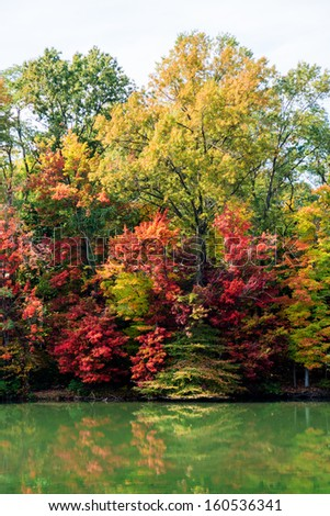 Autumn At The Lake - stock photo