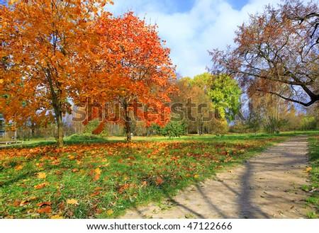 Autumn at the park in Vitebsk - stock photo