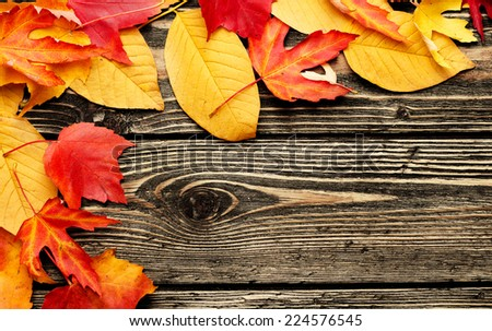 Autumn background. Colorful leaves on a wooden background. Autumnal border design