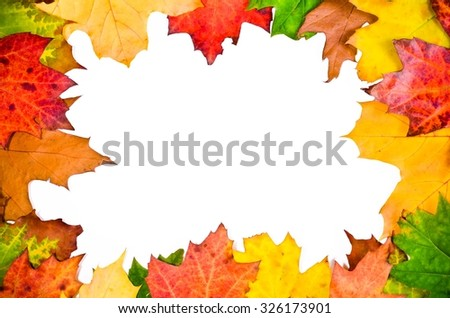 Autumn background. Frame with colored leaves on a white background.