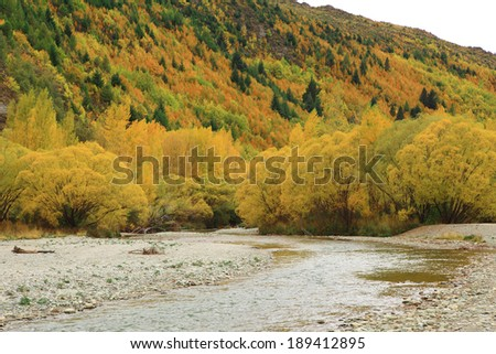 Autumn background in the Arrow town, New zealand. (one famous place from cinema) - stock photo