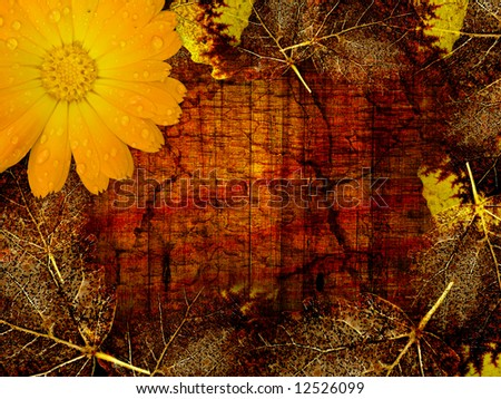 Autumn background, leaves & flower - stock photo