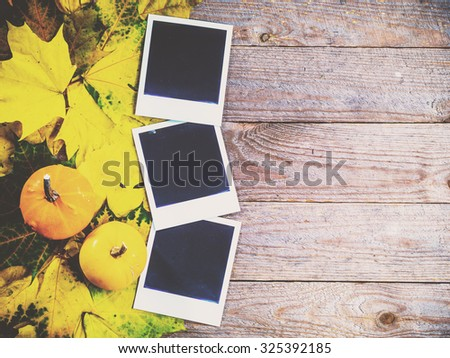 Autumn background with colorful leaves and pumpkins on rustic wooden board. Creating fall season memories with retro photo cards of photo frames. Thanksgiving and Halloween holidays concept. Copyspace - stock photo