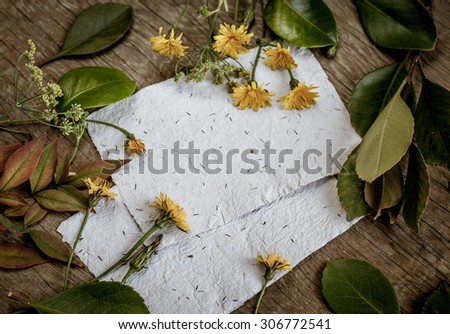 Autumn background with colorful yellow orange leaves, yellow little flowers on wooden background. Fall theme, Autumn concept background with yellow fall leaves and copy space - stock photo