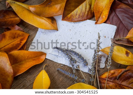 Autumn background with colorfyl yellow orange leaves of magnolia on wooden background. Fall theme, Autumn concept background with yellow fall leaves and copy space