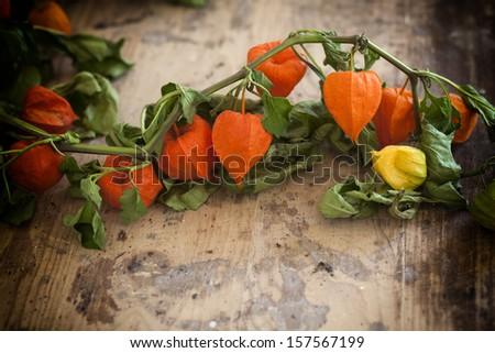 Autumn basket with pumpkins, apples, corn and physalis - stock photo