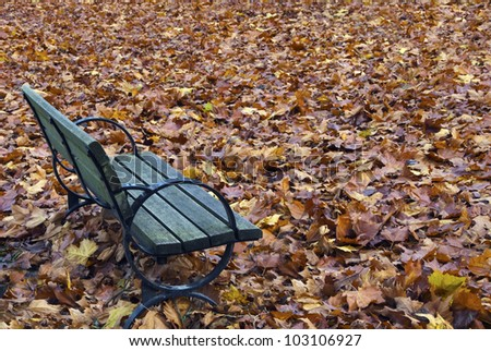 Autumn bench surrounded by colourful leaves.