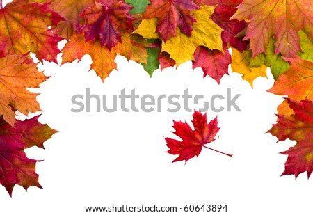 Autumn border card of colored leafs isolated on white