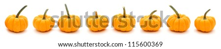 Autumn border of pumpkins in a row with white background - stock photo