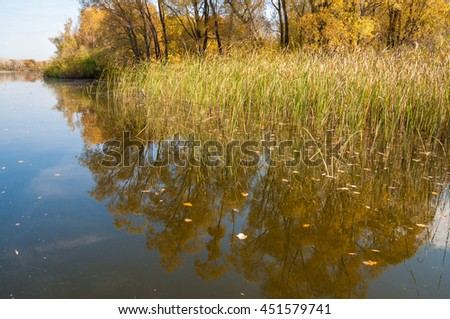 Autumn calm on the lake reflection of trees in water. Beautiful forest reflecting on calm lake shore. Beautiful calm lake in the fall reflecting trees - stock photo