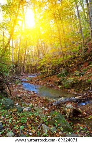 autumn canyon by a sunny day - stock photo