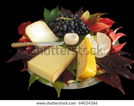 Autumn cheese platter: various cheese (from cow, goat or sheep milk) on a metal platter covered with autumn vine leaves. With muscat grapes & cutting knife. Shot on black background. - stock photo