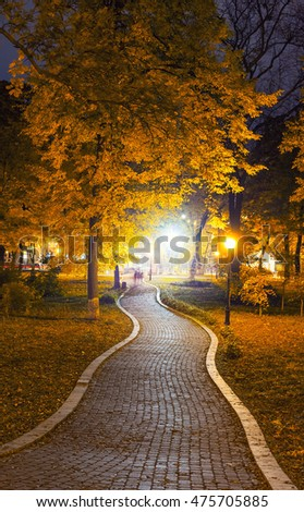 autumn city park at night