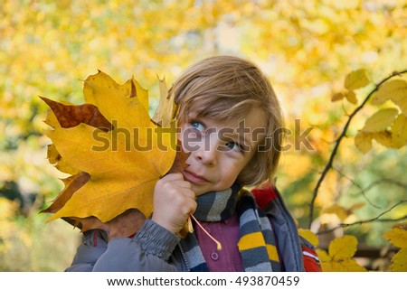 Autumn. Closeup of little boy playing in beautiful autumn park on warm sunny fall day. Kid in autumnal forest. Child playing with golden maple leaves