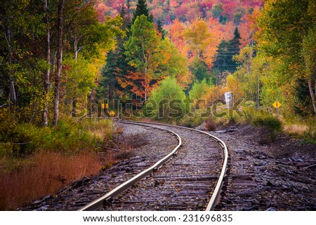 Autumn color along a railroad track in White Mountain National Forest, New Hampshire. - stock photo