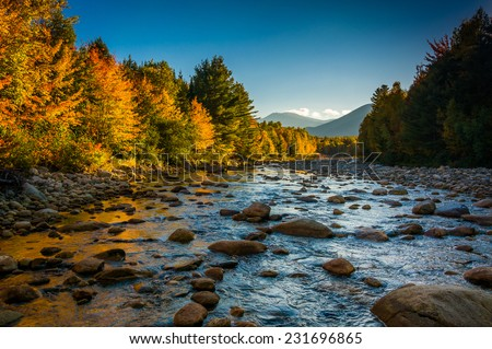 Autumn color along the Peabody River in White Mountain National Forest, New Hampshire. - stock photo