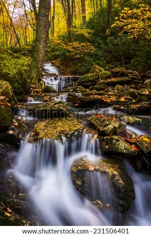 Autumn color and cascades on Stoney Fork, near the Blue Ridge Parkway, North Carolina. - stock photo