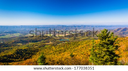 Autumn color in the Shenandoah Valley, seen from Skyline Drive in Shenandoah National Park, Virginia. - stock photo
